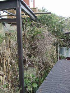 ウッドデッキ基礎:施工前 植物による浸食